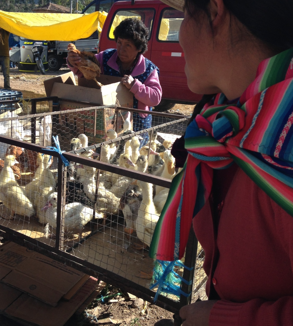 A Morning in the Market by Maria Smith. Program: International Development in Urubamba, Peru.