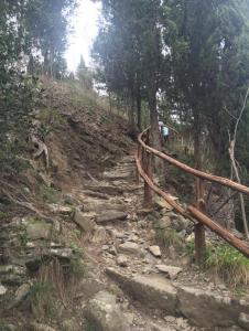 winding path2